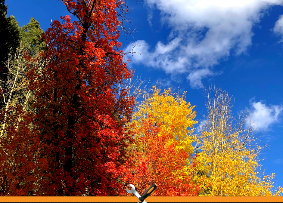8 Tips for Fall Car Care